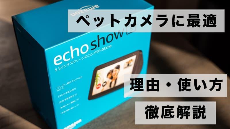 ペットカメラにはEcho showがおすすめ!その理由と使い方を解説